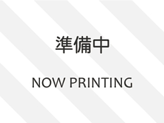 HONDA ELYSION G Aero HDD Navi Special Package с аукциона в Японии